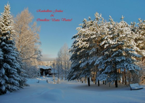 Travel Postcard - Jouluinen maisema